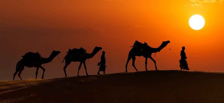 Image of: Dreamstime Jaisalmer Camel Safari Travelers Guide Forever Roaming The Roads Jaisalmer Camel Safari Travelers Guide Forever Roaming The Roads